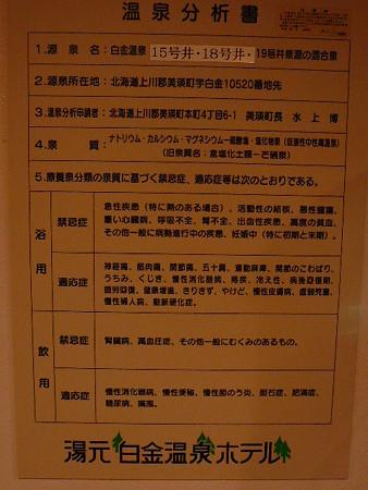 湯元白金温泉ホテル温泉分析書