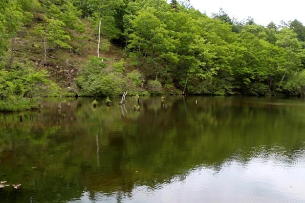 Photos: 遊亀湖