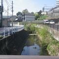 Photos: 14041207_鳥山川