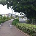 Photos: 14052009_明治用水遊歩道