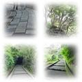 Photos: 道
