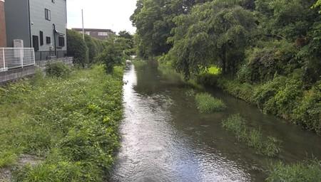 ゆったりとした流れの用水路