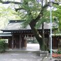 Photos: 39-高知 高知市 山内神社-20001021-006
