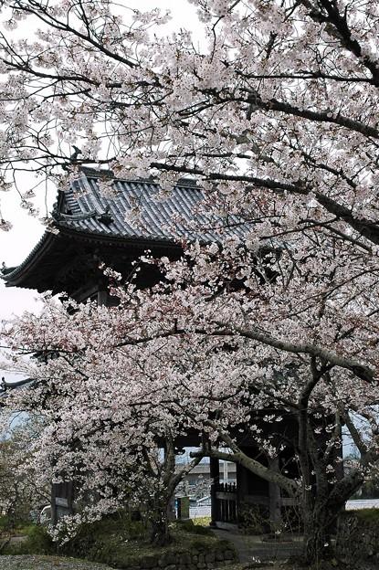 熊谷寺・仁王門
