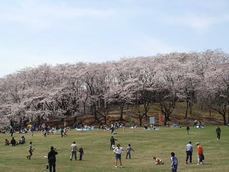 2008-03-29_004