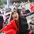 写真: かつみ鳴子会_浦和よさこい2008_41