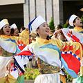 写真: 勇舞会_彩夏祭2008_19