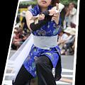 写真: 花珠_浦和よさこい2008_03