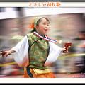 よさこい柏紅塾_スーパーよさこい2008_04
