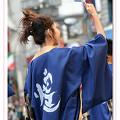 写真: よさこい煌_東京よさこい2008_01