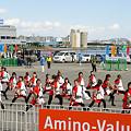 """写真: 早稲田大学 """"踊り侍""""_東京大マラソン祭り2008_27"""