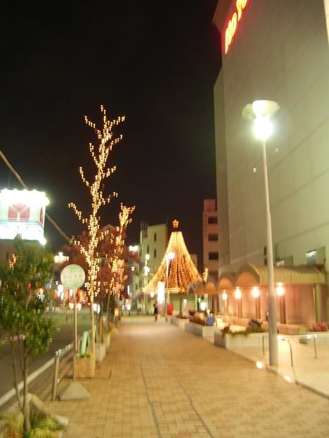 写真: ラピオ前のクリスマスツリー