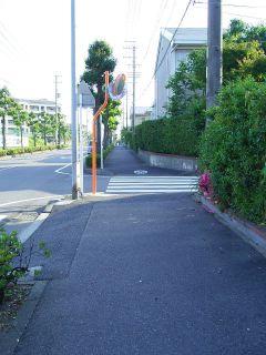 歩道_桃ヶ丘1