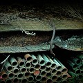 Rusty pipes......