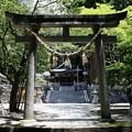 写真: 気多若宮神社 2
