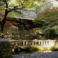 神社 寺  季節 花