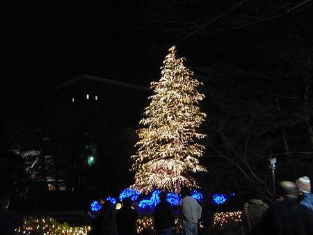 クリスマスツリー9(玉川学園)