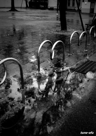 公園144