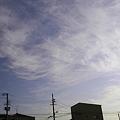 Photos: 毛状雲 南東側の空 全体的に