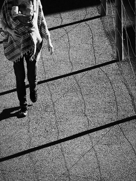 抱っこ散歩