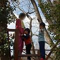 Photos: 有野実苑24
