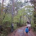 Photos: saiko009