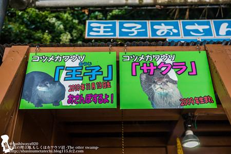 katurahama140525002