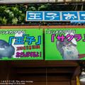 Photos: katurahama140525002