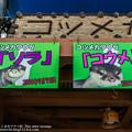 写真: katurahama140525001