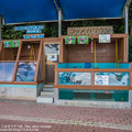Photos: katurahama140525005