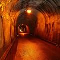 写真: 谷津隧道内部