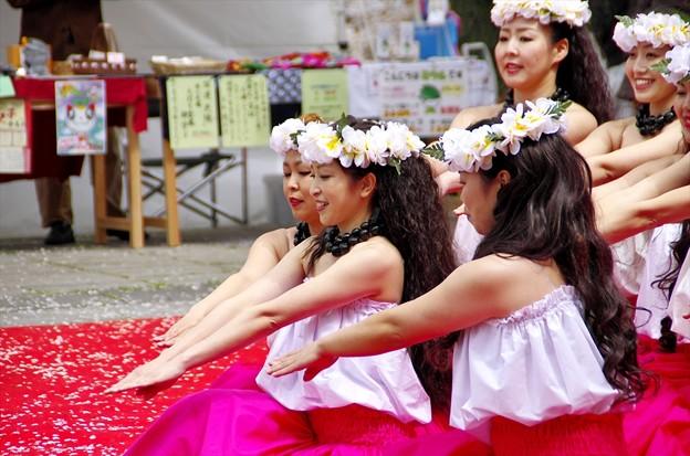 津久井湖さくら祭り14「決めポーズ」
