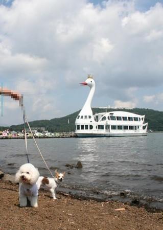 山中湖観光船と。