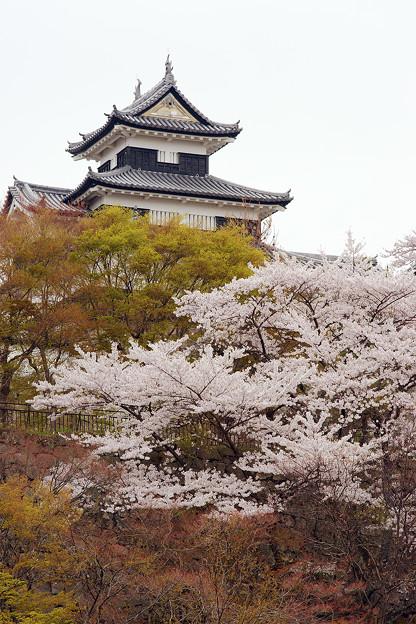 小峰城の春