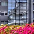 Photos: 2014年4月28日 駿府城 坤櫓とツツジ(3) HDR