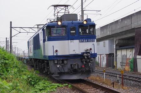 IMGP9358