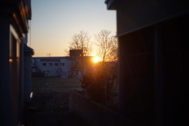 写真: DSC00287