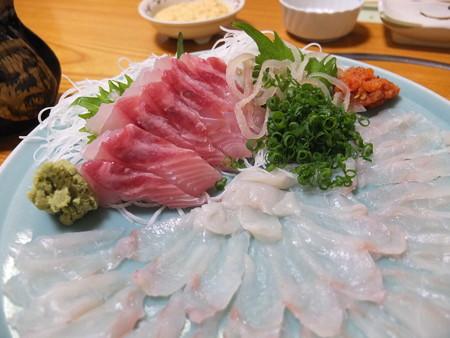 割烹かこう(嘉肴) トラフグと真鯛 アップ