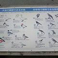 写真: お幕場大池公園に来る鳥たち