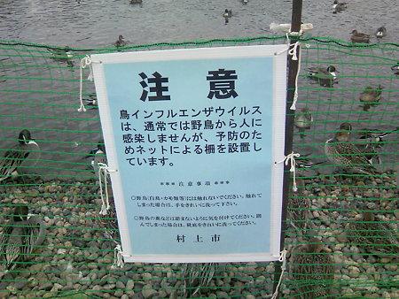 柵の警告文