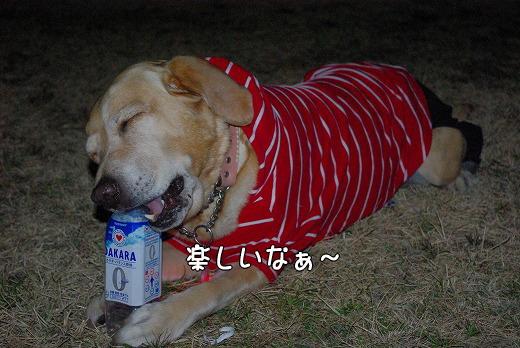 s-myu2009_0219(306)