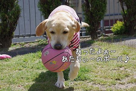 s-myu2009_0330(028)