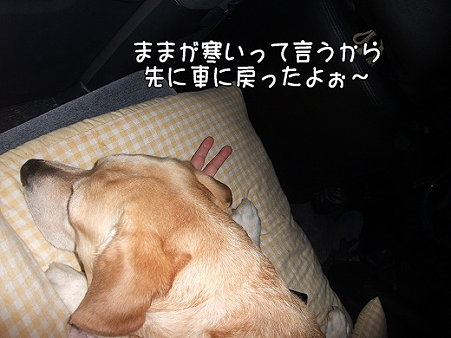 s-myu2009_0501(254)