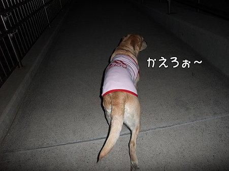 s-myu2009_0502(096)