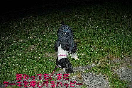 s-myu2009_0513(037)