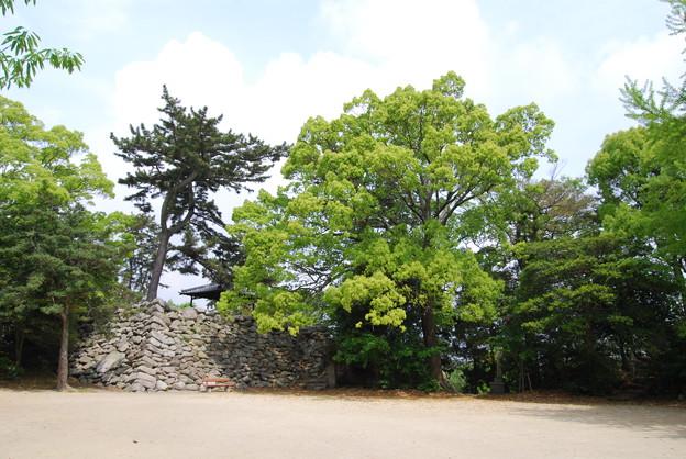 神戸城 天守台跡