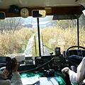 写真: 旧道を上羽幌へ