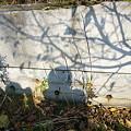 写真: 洗い場の壁
