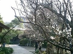 05)鎌倉市小町「宝戒寺」