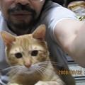 写真: 2008年8月22日のボクチン4歳